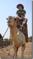 camel_ride