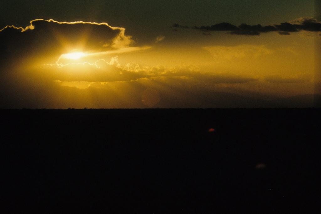 Loglogo sunset